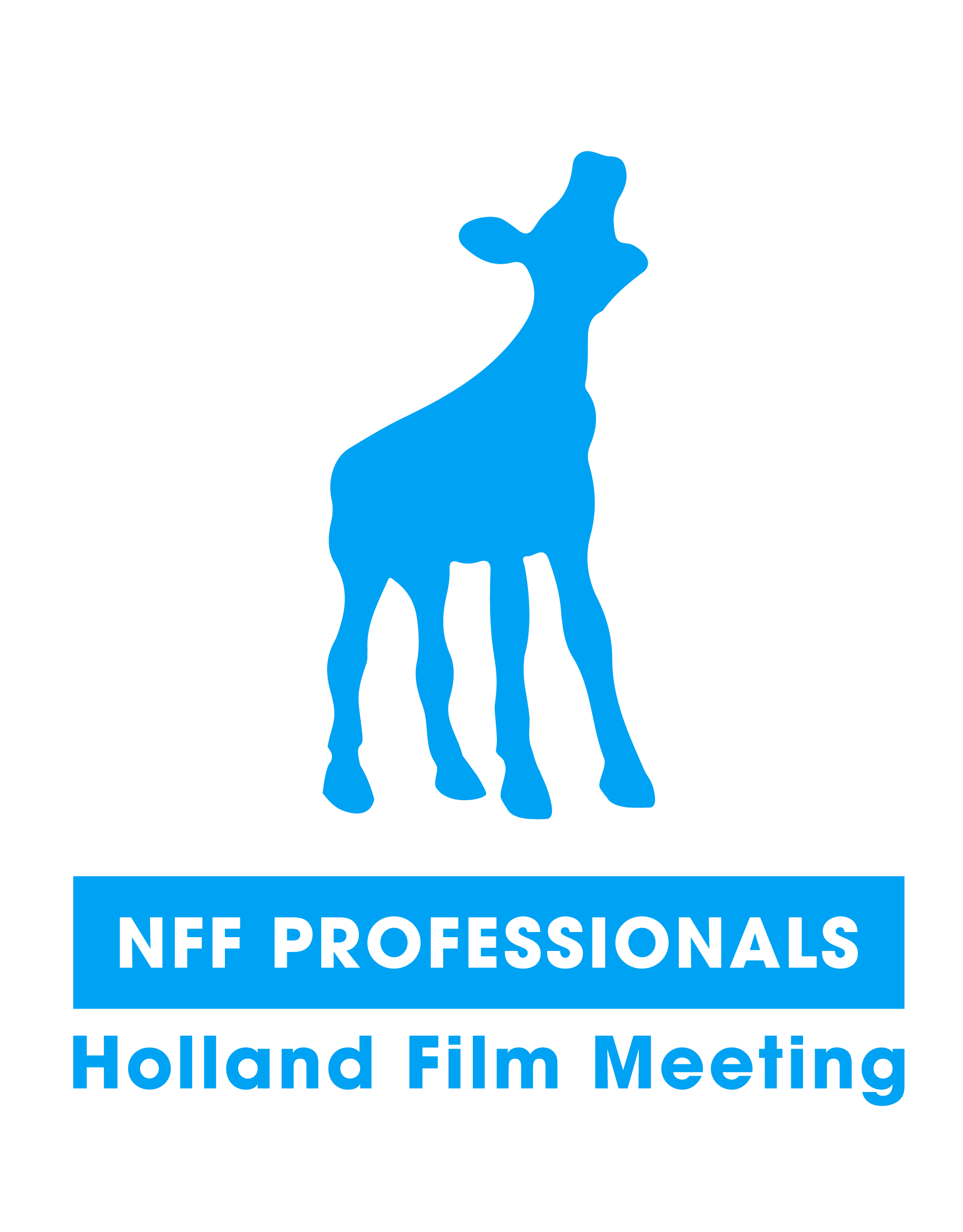 DTM selected by Holland Film Meeting bij NFF