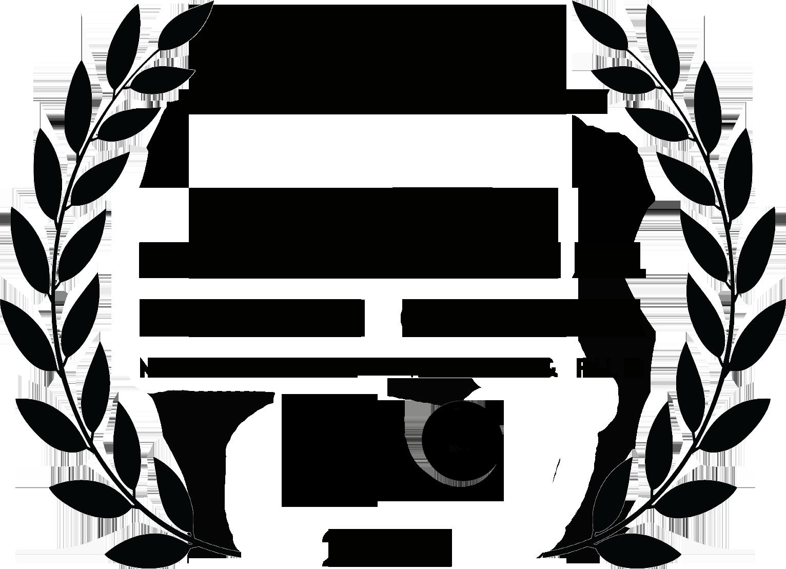 "Winner: Mejor Largometraje Documental -Best Feature Documentary ""Are You There?"" 2021 of the International Biennial Dona I Cinema in Valencia, Spain."